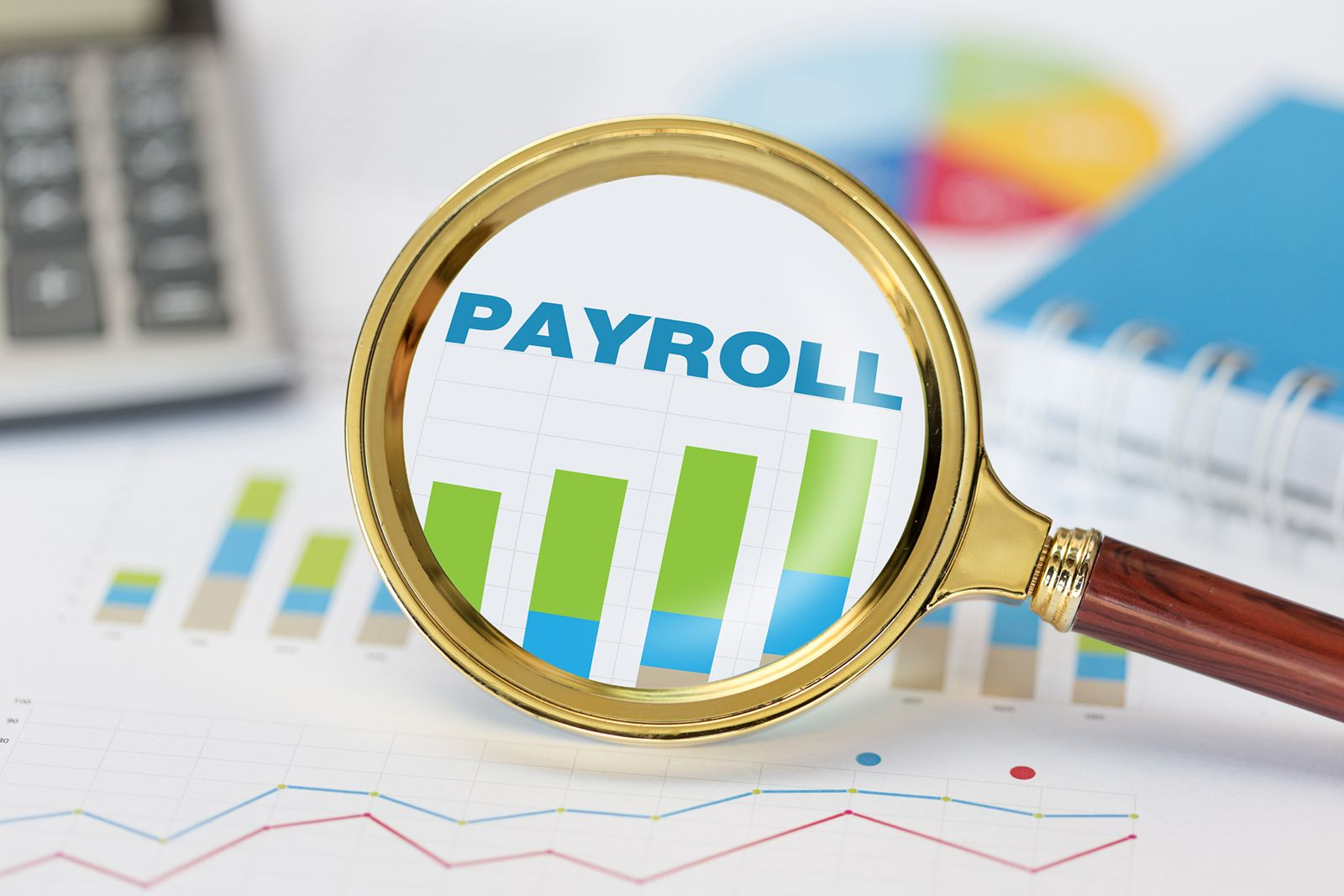 Payroll Options for Small and Growing Businesses - John Cook Studios